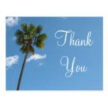Thank You palm tree Postcard