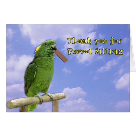 Thank You Parrot Sitting Card