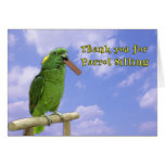 Thank You Parrot Sitting Greeting Card
