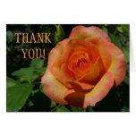 Thank You Peach Rose Card