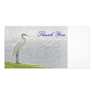Thank You, Photo Card