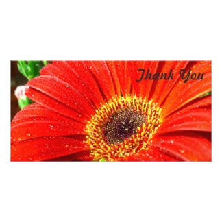 Thank You photo card - large red flower