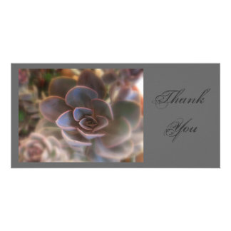 Thank  You, Pink Succulent Photo Card