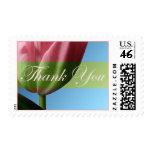 Thank You Pink Tulip Wedding Postage Stamp