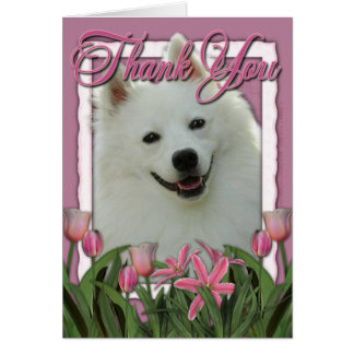Thank You - Pink Tulips - American Eskimo Greeting Card