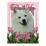 Thank You - Pink Tulips - American Eskimo Postcard