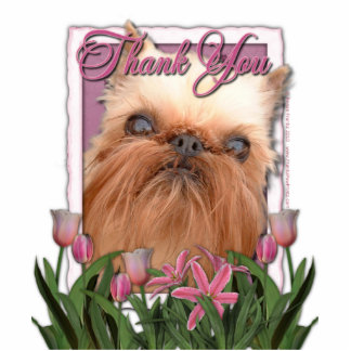 Thank You - Pink Tulips - Brussels Griffon Statuette