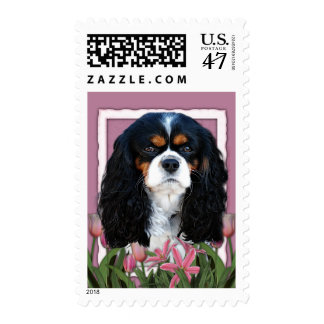 Thank You - Pink Tulips - Cavalier - Tri-Color Postage