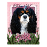 Thank You - Pink Tulips - Cavalier - Tri-Color Post Cards