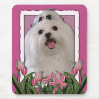 Thank You - Pink Tulips - Maltese Mouse Pad