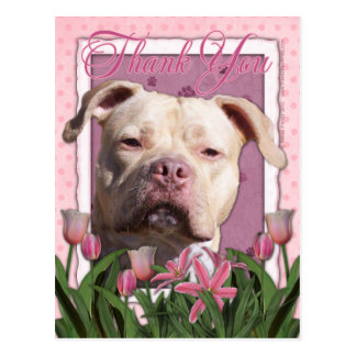Thank You - Pink Tulips - Pitbull - Jersey Girl Postcard