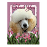 Thank You - Pink Tulips - Poodle - Apricot Postcard