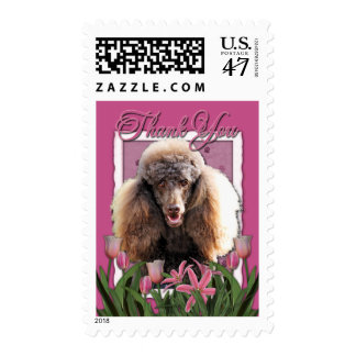 Thank You - Pink Tulips - Poodle - Chocolate Postage Stamp