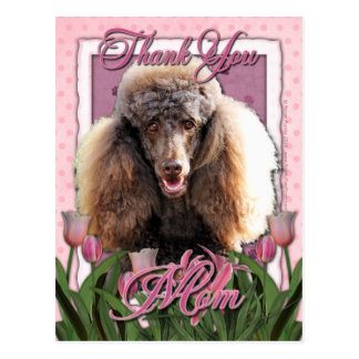 Thank You - Pink Tulips - Poodle - Chocolate Postcard