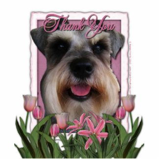 Thank You - Pink Tulips - Schnauzer Statuette