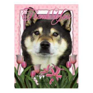 Thank You - Pink Tulips - Shiba Inus - Yasha Postcard
