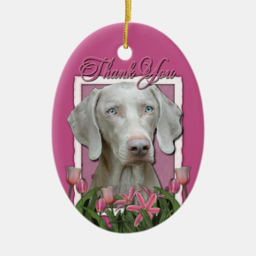 Thank You - Pink Tulips - Weimeraner - Blue Eyes Ornaments