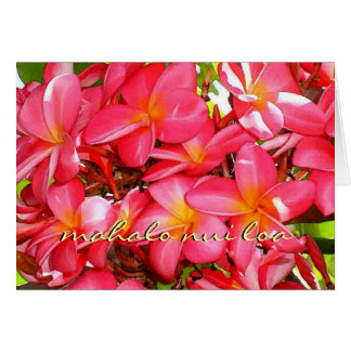 Thank You Plumeria Stationery Note Card