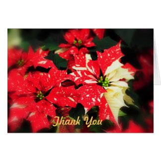 Thank You Poinsettas Greeting Card