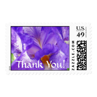 Thank You! postage stamps Purple Iris Flowers
