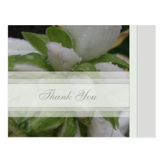 Thank You Postcard