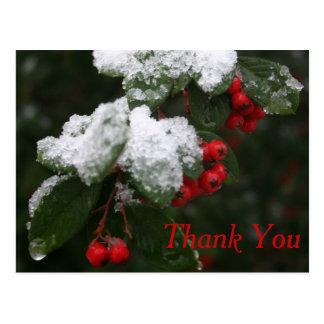 Thank You Postcard: Winter Postcard
