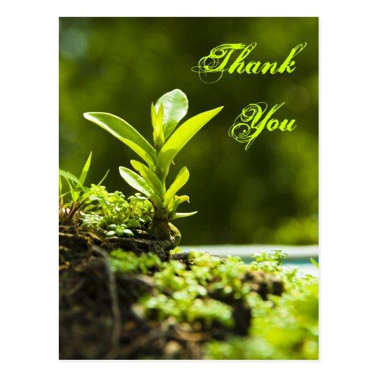 Thank you -  postcards