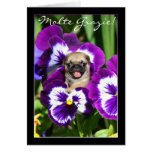 Thank You Pug in pansies greeting card