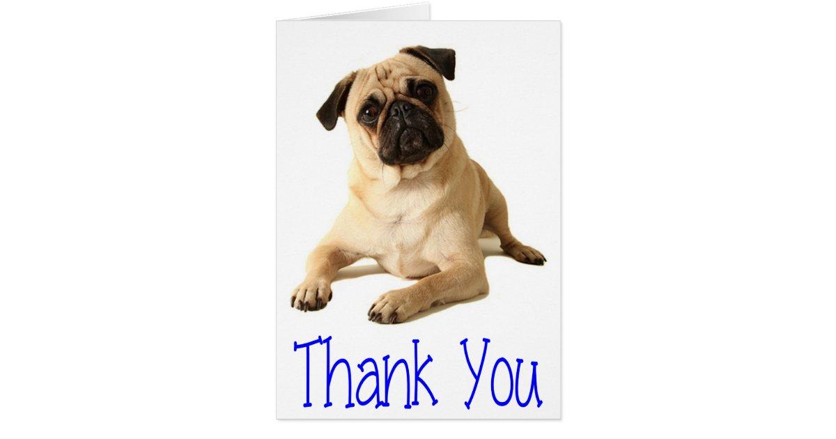 Thank You Pug Puppy Dog Blank Note Card | Zazzle.com