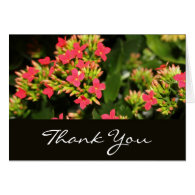 thank you, red flowers greeting cards