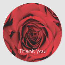 Thank You Red Rose Sticker
