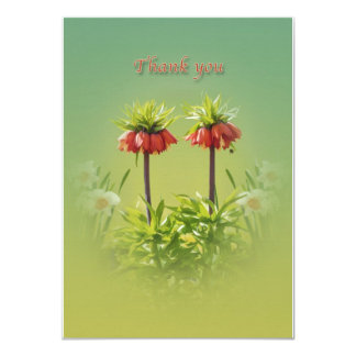 Thank You, Red Rubra Tulips Card