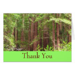 Thank You Redwood Forest Card