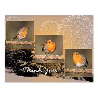 Thank You Robin Tryptych Postcard
