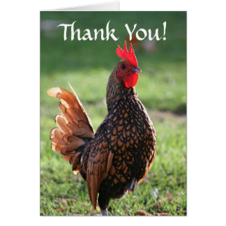 Thank You, Rooster Greeting Cards