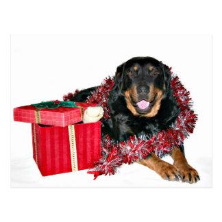 Thank you Santa Postcard