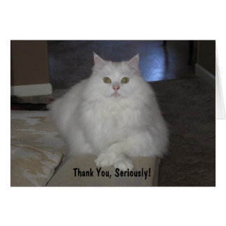 Thank You, Seriously! Card