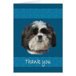 Thank You, Shih Tzu Dog Card