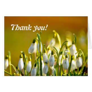 Thank you - Snowdrops Card