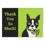 Thank You So Much! Green Black Boston Terrier Card