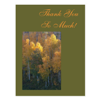 Thank You So Much! Post Cards