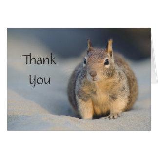 Thank You Squirrel Card