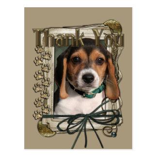 Thank You - Stone Paws - Beagle Puppy Postcard