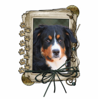 Thank You - Stone Paws - Bernese Mountain Dog Standing Photo Sculpture