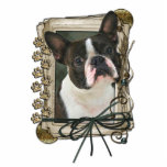 Thank You - Stone Paws - Boston Terrier Photo Cut Out