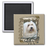Thank You - Stone Paws - Coton de Tulear Refrigerator Magnets