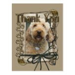 Thank You - Stone Paws - GoldenDoodle Post Card
