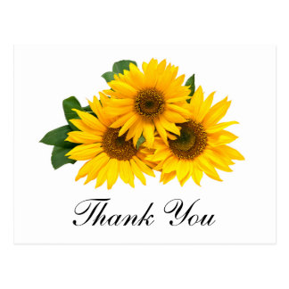 Thank You Sunflower Floral Greeting Post Card