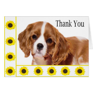 Thank You Sunflowers Cavalier King Charles Spaniel Greeting Card