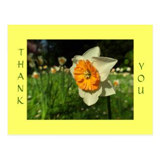 Thank you - sunshiny flower card